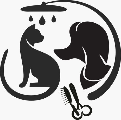 Curso tosquias / grooming