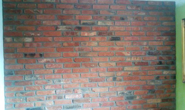 Staracegłacięta.W GDAŃSKU TNIEMY CEGŁĘ Cegła na ścianę, Płytki z cegły