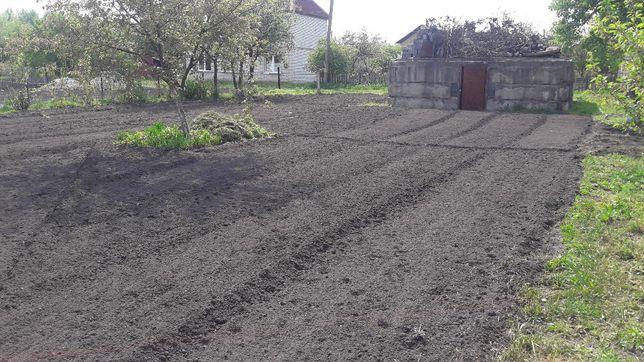 Земельный участок 0,06 га (6 соток), с. Тарасовка (Вильне) Жердова