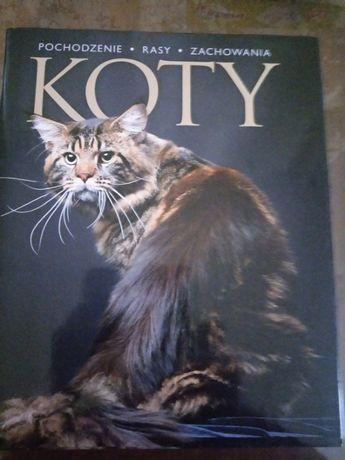 Koty - Rasy