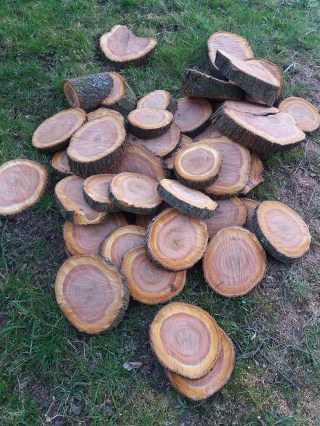 Plastry drewna śliwy