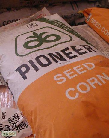 Насіння кукурудзи Pioner 8816-9025 ФАО300-330