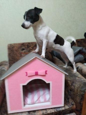 Домик для собаки (для квартиры)