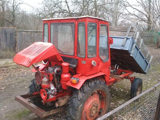 Продам Трактор т16
