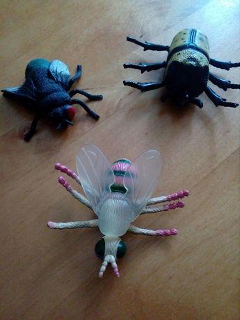 Насекомые муха жук пчела