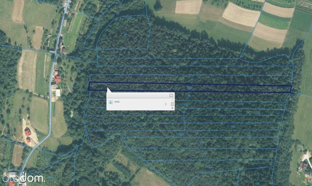 Sprzedam las w miejscowości Wronowice 0,85 ha