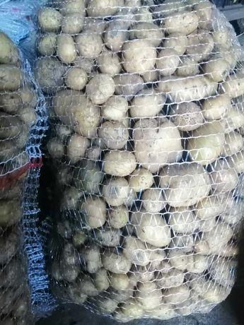 Ziemniaki młode paszowe(odpadowe)