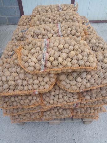 Ziemniaki paszowe odpadowe