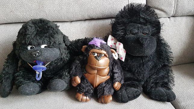 Pluszaki -małpki