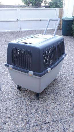Box de transporte cão.