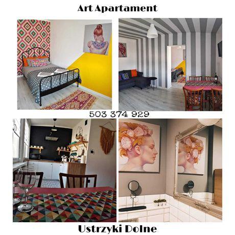 Art Apartament 1 Ustrzyki Dolne / Bieszczady / Noclegi