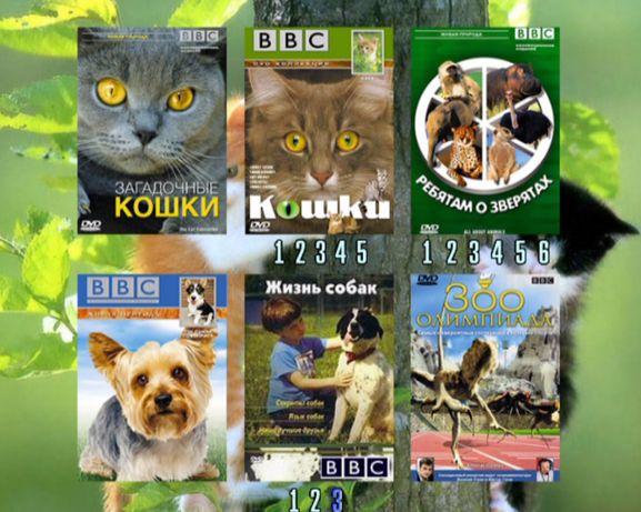 ДВД диск с позновательной детской программой ребятам о зверятах ВВ