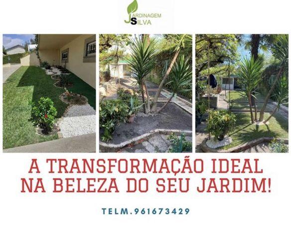 Manutenção de jardim , podas e limpezas de terreno