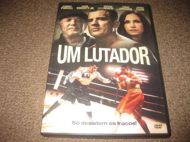 """DVD """"Um Lutador"""" com Dominic Purcell"""