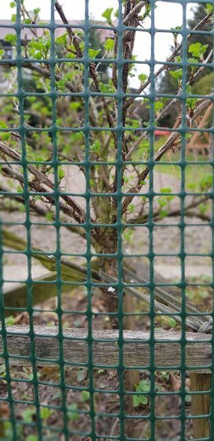 Siatka plastikowa rabatowa 0.4x50m ogrodowa ogrodzeniowa zielona 40c6