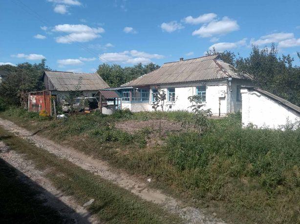 Продам хату в селі Велика вільшанка