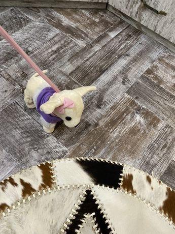 Собачка на поводке