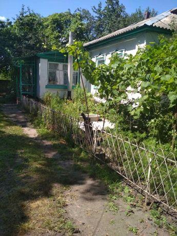 Продам частный дом в селе Мирное, Бориспольский р-н. Собственник!