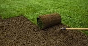 Trawa z rolki, trawnik z siewu, nawadnianie ogrodu