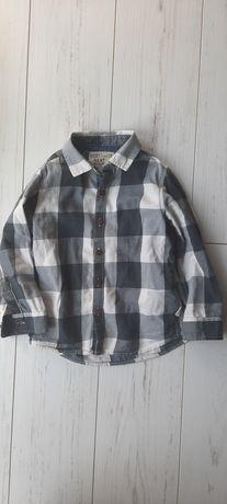 Koszula krata Next 98