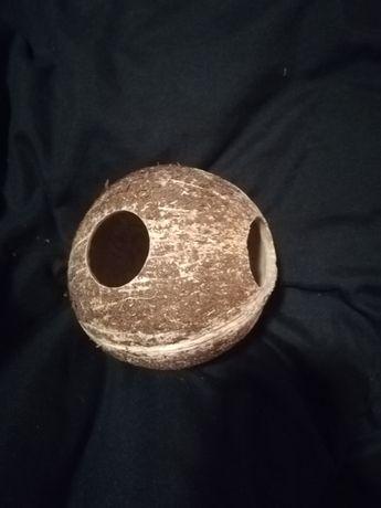 Kokos do Akwarium