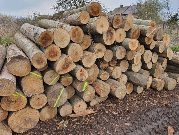 Drewno kominkowe opalowe buk grab