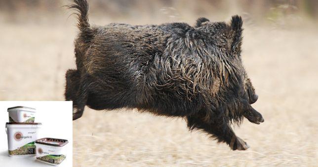 Odstraszacz na sarny i dziki, odstraszanie saren, preparat na dziki
