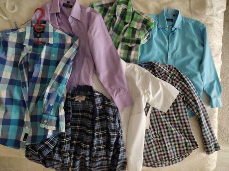 Сорочки та теніски