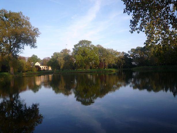 dwór z parkiem 5,03 ha dworek jezioro Popowo Kościelne gm. Mieścisko