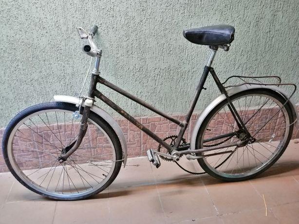 Malwa rower, damska retro 26 cali