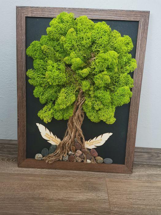 Obraz drzewo z mchu Obory - image 1