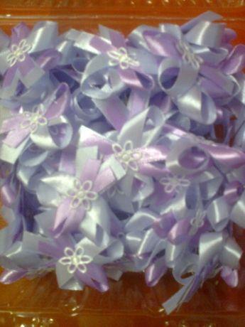 Kotyliony fioletowe