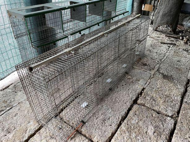 Coelheira/ Gaiola para criação de coelhos