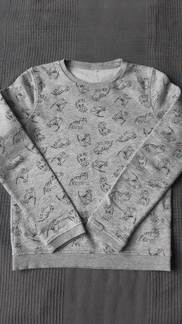 Bluza w kotki 146