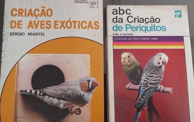 Criação de aves exóticas e periquitos
