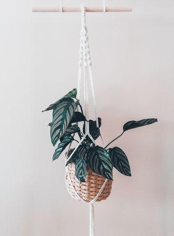 Plant hanger - suporte para plantas macramé em várias cores