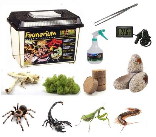 Zestaw do hodowli ptaszników skorpionów terrarium 8 rzeczy 30x19x20 cm