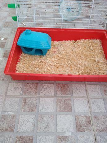 Gaiola para ratos