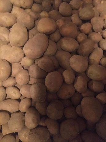 Ziemniaki czosnek