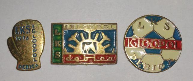 Iglopol Dębica - odznaki