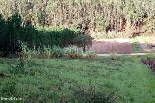 Terreno Rústico - Quinta do Porto - Parceiros