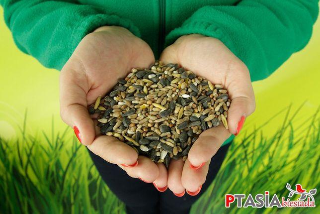 Mieszanka nasion karma dla ptaków 10kg STANDARD