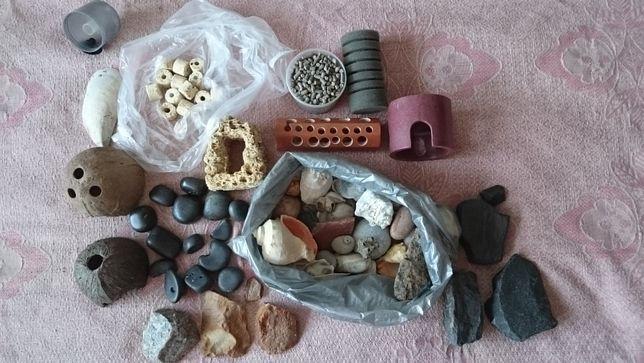 Сокровища Черного моря