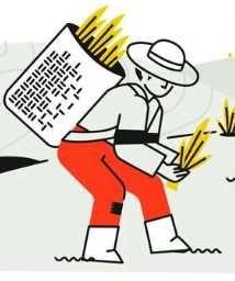 Oferta Trabalhador  Agricola
