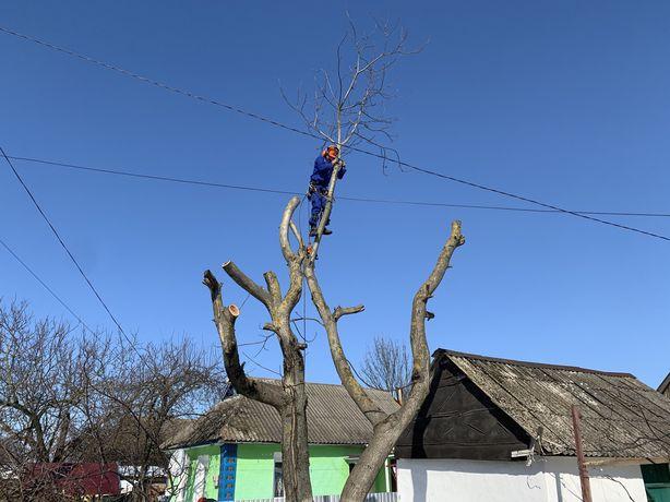 Обрезка порезка валка спил деревьев обрізка порізка дерев !