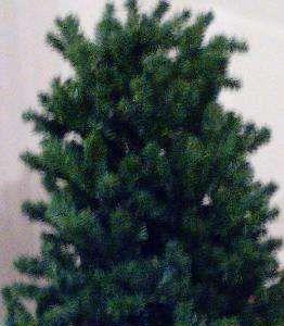 Árvore de Natal Feitosa - imagem 1