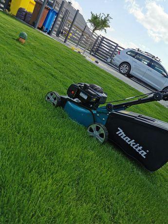 Oddam regularnie ścinaną świeżą trawę