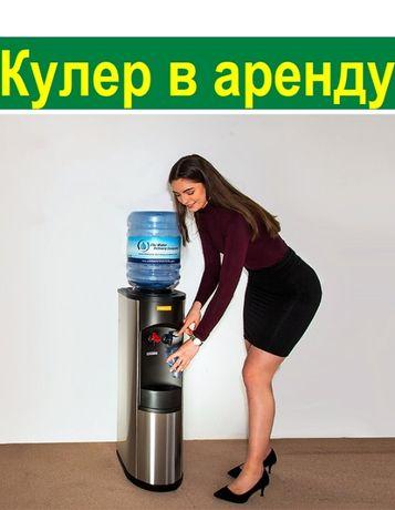 Аренда Прокат кулера для воды посуточно или ежемесячно. Кулер в аренду