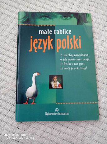 Język polski małe tablice