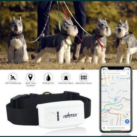 GPS трекер ошейник для собак кошек TK911 TK909 TK 911 TK 909